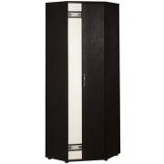 Шкаф для одежды угловой универсальный Триумф 36.02