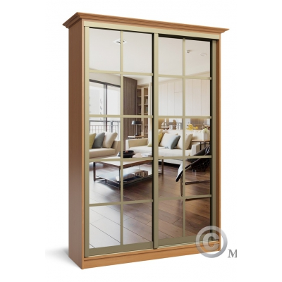 Шкаф-купе с зеркалом в зал Премиум-3