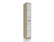 Шкаф скошенный Фанк НМ 013.05-01