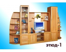 Стенка Этюд - 1
